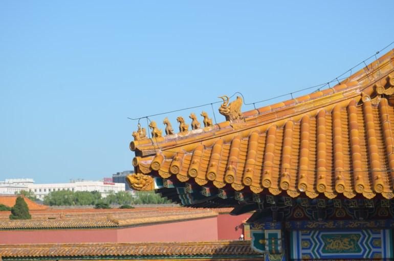 חיות מגינות על הגג מלמעלה, בעוד קורות עץ מסודרות בקפידה תומכות בו מלמטה (צילום: נוגה פייגה)