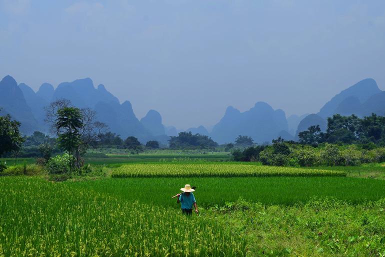 סין הכפרית ביאנגשואו (צילום: טל ניצן)