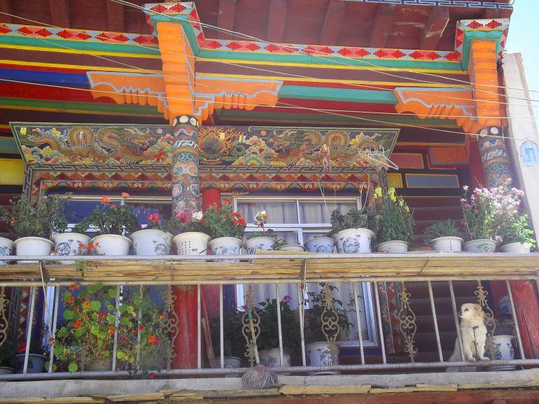 בית טיבטי בגאנדזה - דרך מצויינת לדגום את העולם הטיבטי בתוך סין (צילום: נוגה פייגה)