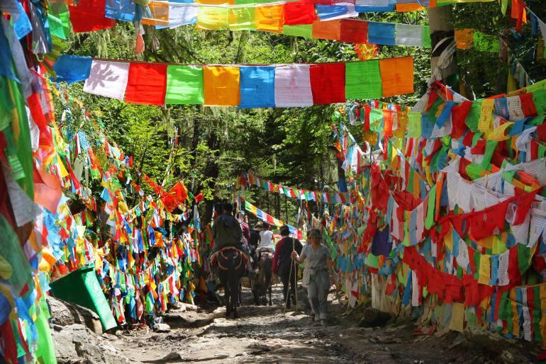 הפס - דגלים טיבטיים צבעוניים מבשרים את נקודת ההגעה (צילום: יובל לוי)