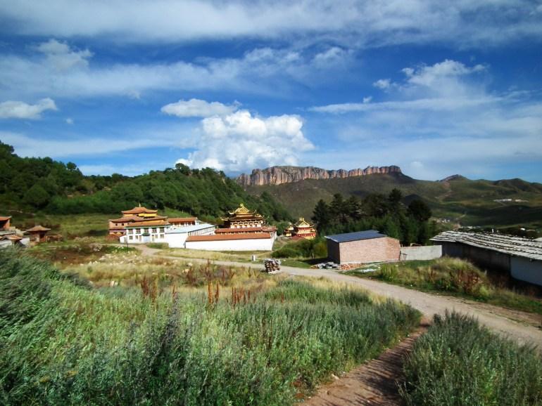 נוף מסרטרי גומפה (צילום: טל דרניצקי)
