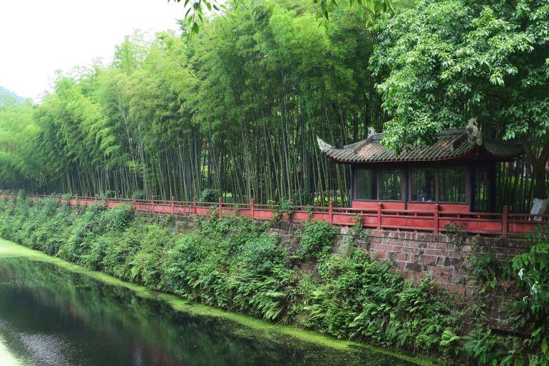 הכניסה לפארק הבודהה האוריינטלי (צילום: טל ניצן)
