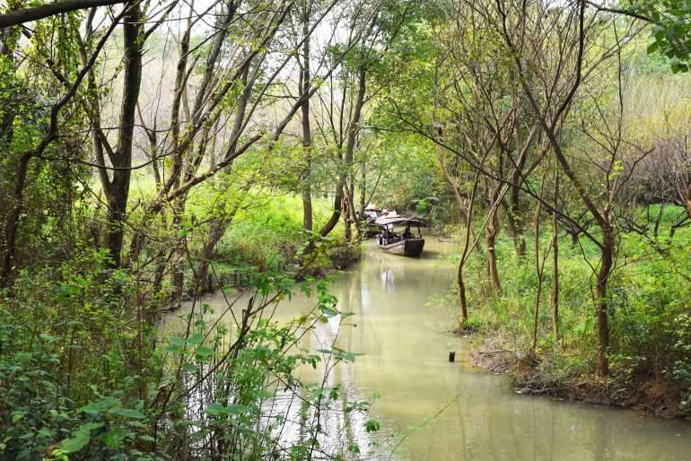 פארק הביצות ש'יש'י (צילום: טל ניצן)