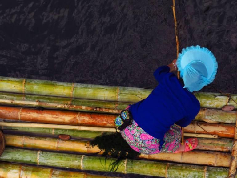 אישה מבנות הדאי אוספת אצות למאכל מקרקעית הנהר המקומי, דרום שישואנגבאנה (צילום: דור חג'בי)