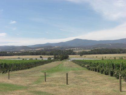 Australia 2008 076