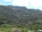 Central America 028
