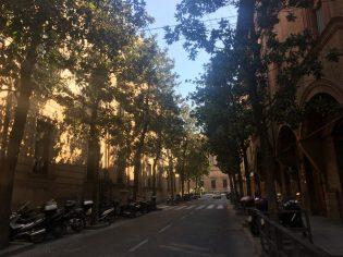 Leafy Via Garibaldi