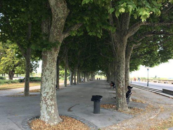 Promenade du Peyrou, Montpellier