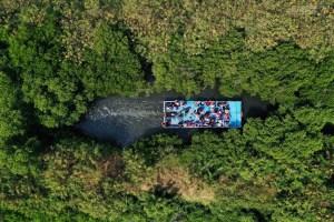 台南,四草,綠色隧道,亞馬遜