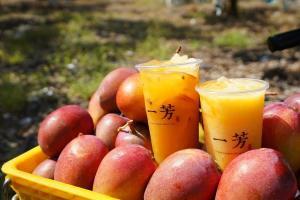 一芳,水果茶,愛文芒果,屏東枋山,小農,甘蔗