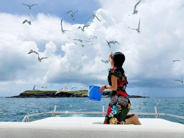 遊艇,澎湖,台南,離島,海底薰衣草森林,南方四島,東吉嶼