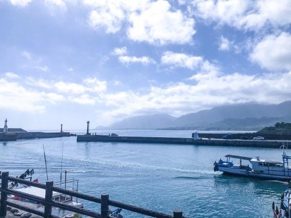 成功漁港,新港漁港,漁獲叫賣,旗魚