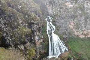 烏來,0確診,新娘瀑布,秘魯