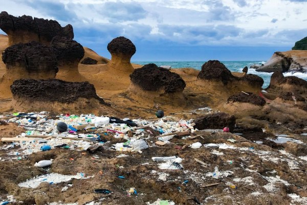 野柳,降級,二級警戒,開園,海洋垃圾