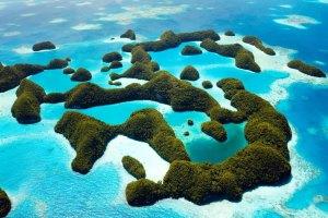 台帛旅遊泡泡,帛琉,疫苗,出國打疫苗
