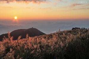 台北景點,陽明山,芒花,陽明山夜景