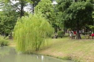 台南住宿,台糖長榮酒店(台南),巴克禮公園