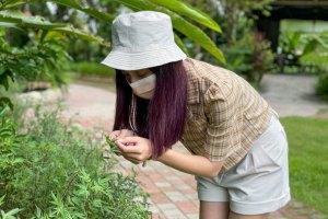 桃園景點,大溪景點,農事體驗,蝶豆花,窯烤pizza,好時節休閒農場,綠和農場