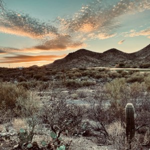 Quick Notes on Our Trip to Tucson | TravelCommons