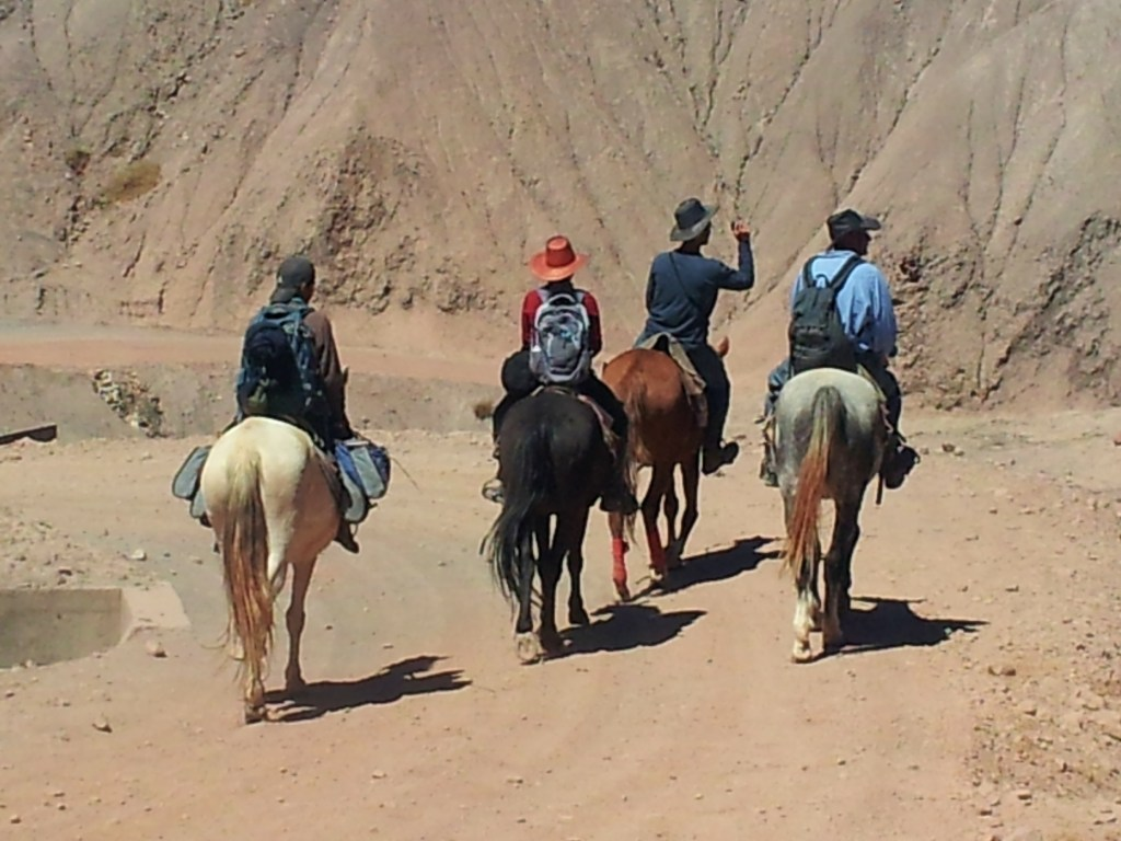 Horse and the Badlands - no mobile phones - in Tuipiza, Bolivia