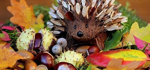 Harvest decorations