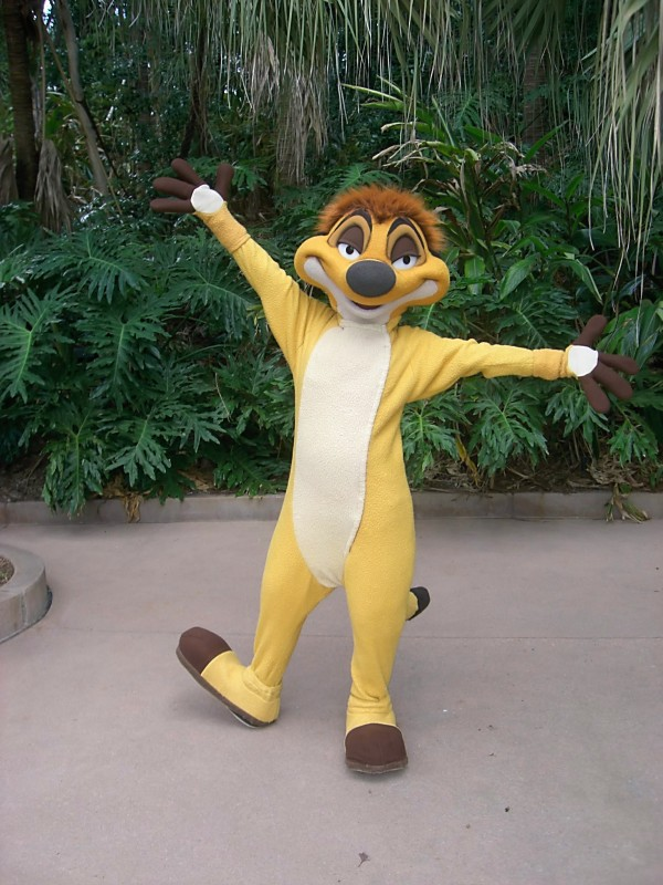 Timon Character Meet Coming To Discovery Island At Disney S Animal Kingdom Destinations With