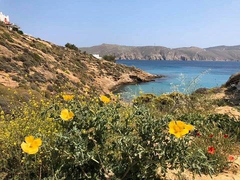 Paesaggio delle Cicladi