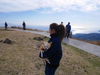 伊豆高原大室山リフト犬と一緒