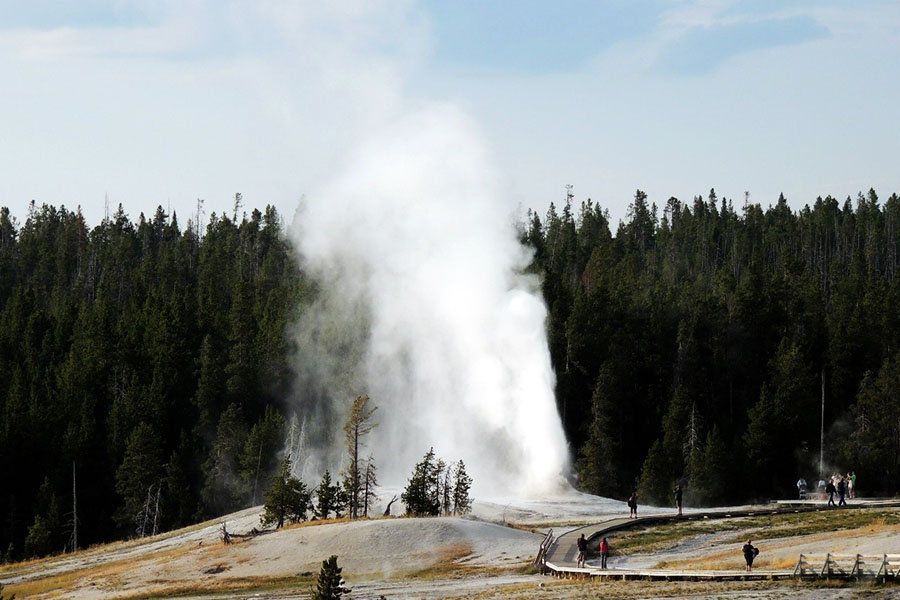 Summer Vacations Yellowstone