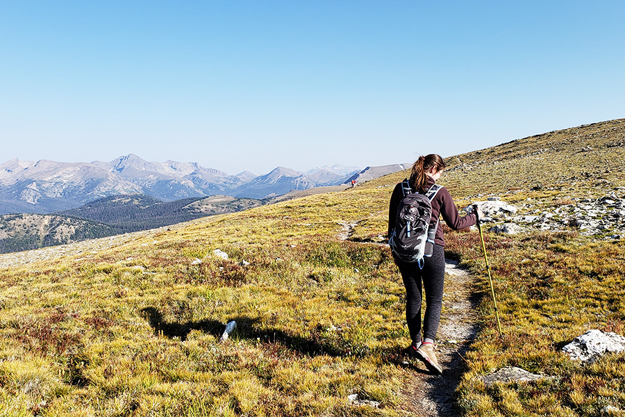 Mount Ida Hike along the Continental Divide