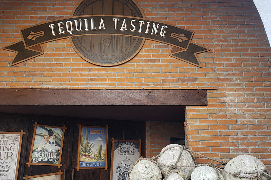 Tequila tasting in the cruise port