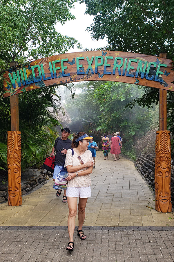 Visit the Wildlife Experience at Harvest Caye for free