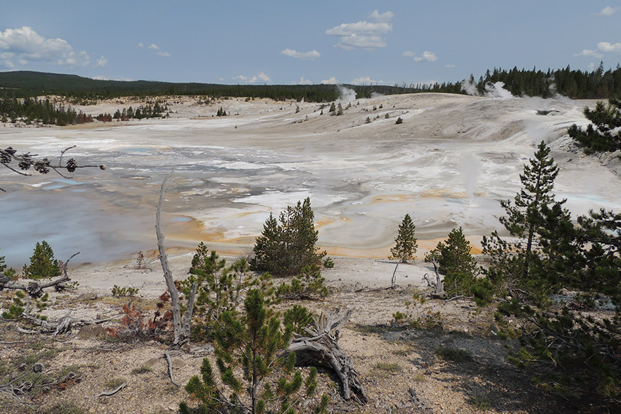Why Go To Yellowstone