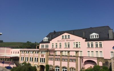 Wine Tasting in Luxembourg's Moselle Region
