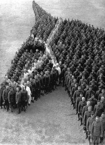 humain horse shape
