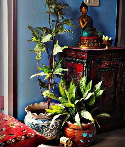 angolo indiano con parete blu