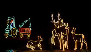James Island Christmas Lights 2019.15 Must Do Holiday Events In Charleston Things To Do In