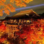 京都の紅葉が観れるオススメ人気場所3選!見頃の時期は11月中旬!