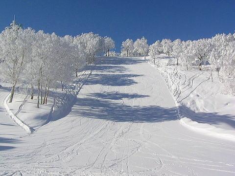 野沢温泉スキー場のオープンは2015年11月29日!近い宿もご紹介。