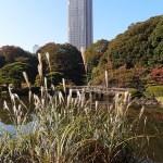 男一人でも楽しい!東京観光スポットはここだ!