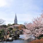 春を楽しめる東京観光スポット厳選5つをご紹介!