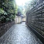 東京の散歩特集!ひとりで行くのはここ!