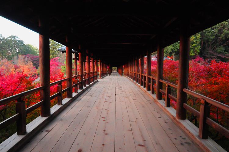 雨の日でも楽しめる!京都の観光オススメスポットをご紹介。
