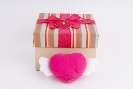 hart_gift_love_237011
