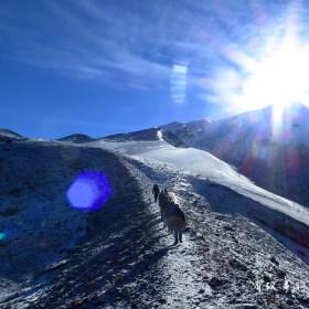 Volcano Osorno 奧索爾諾火山 智利