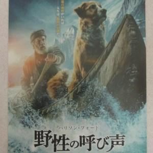極地守護犬 電影海報