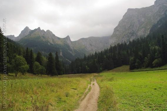 Tatry Zachodnie - Dolina Małej Łąki