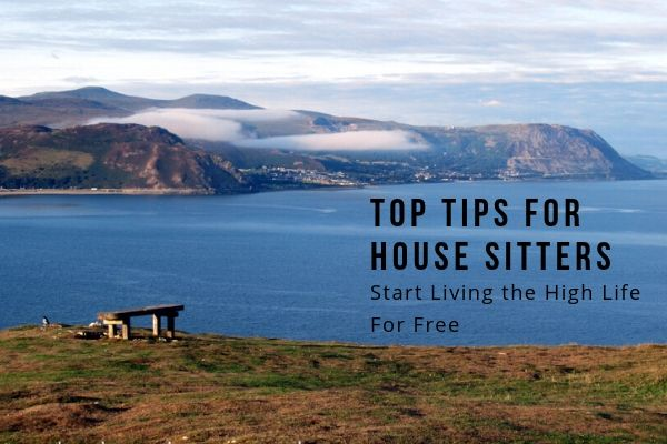 Top Tips For House Sitters