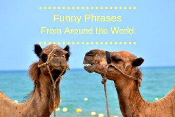 Funny Phrases from Around the World