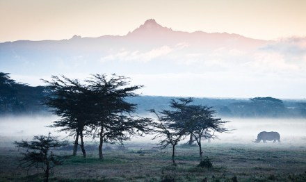 Views at Solio Lodge, Kenya, Africa